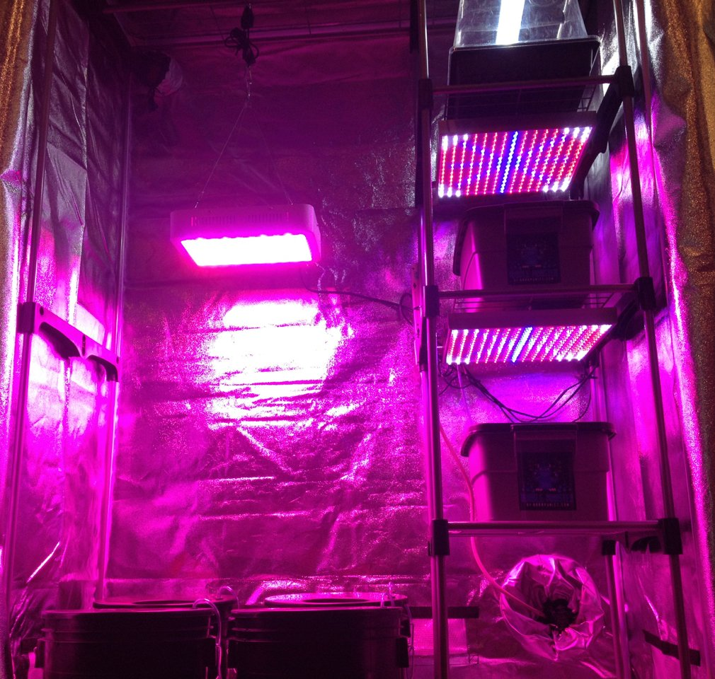Hydroponic Nursery & Grow Room - Complete Grow Kit - Grow Tent - LED Grow System