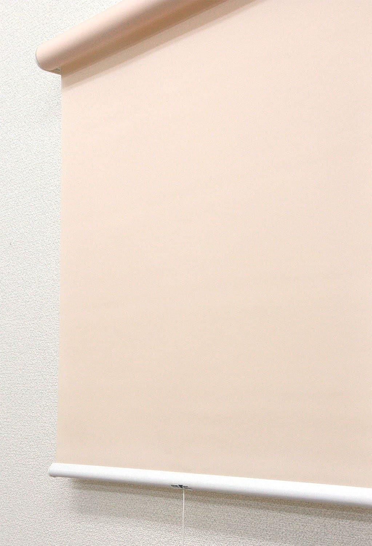 SMONTER 遮光ロールスクリーン 簡単な修正ゼブラローラーブラインド、インストールアクセサリー昼と夜のブラインド