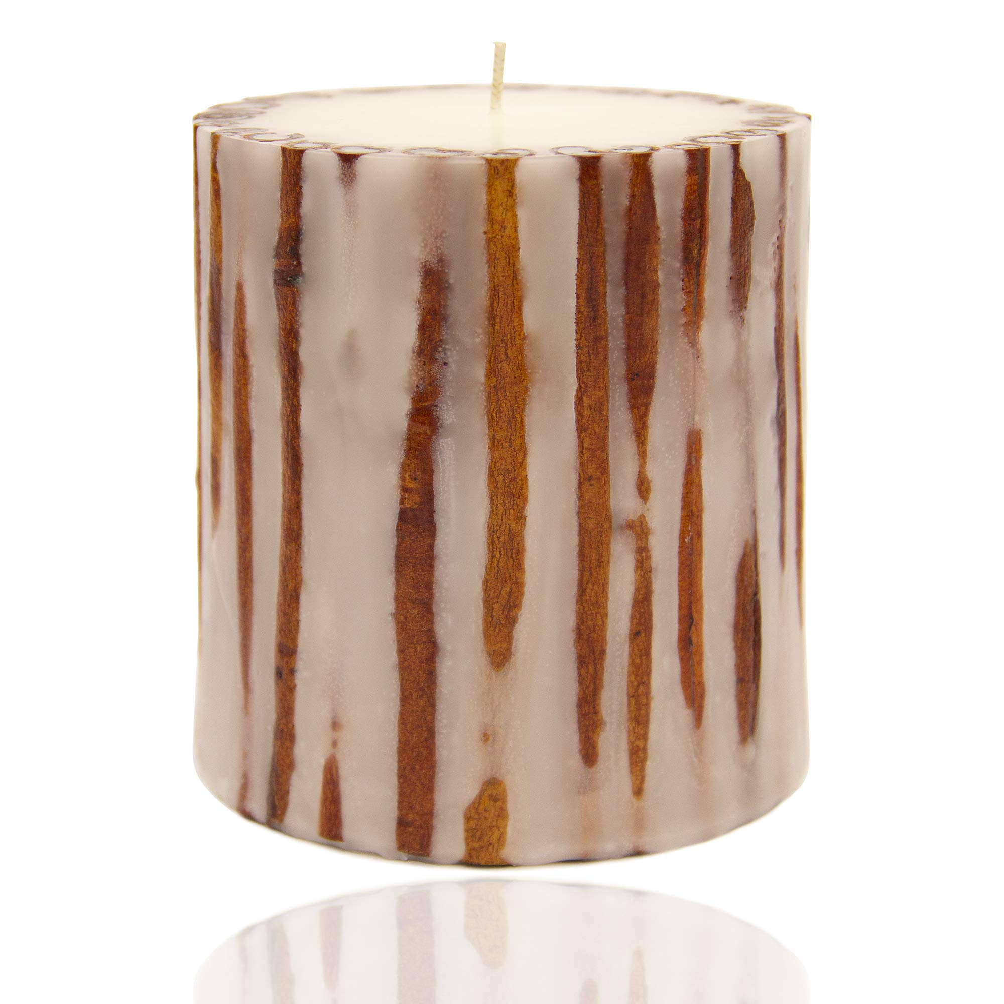 Andaluca Cinnamon Botanical Candle | 5 x 5 inch | Handmade in USA | 100+ Hours Scented Burn by Andaluca