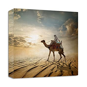 Amazoncom Journey Through Desert Camel Streched Canvas Wrap Frame