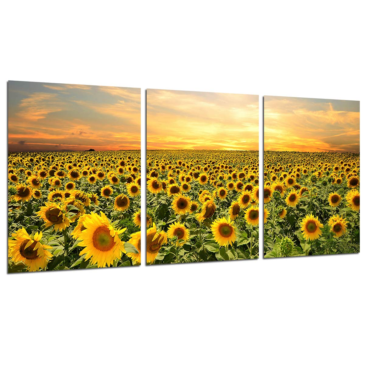 Sunflower Wall Art Canvas Painting -Unframed Flowers Home Decor Nature Pictures Sunset Posters and Prints Kitchen Decoration Wall Paintings for Living Room Modern Floral Artwork 3 Panels 12x16''