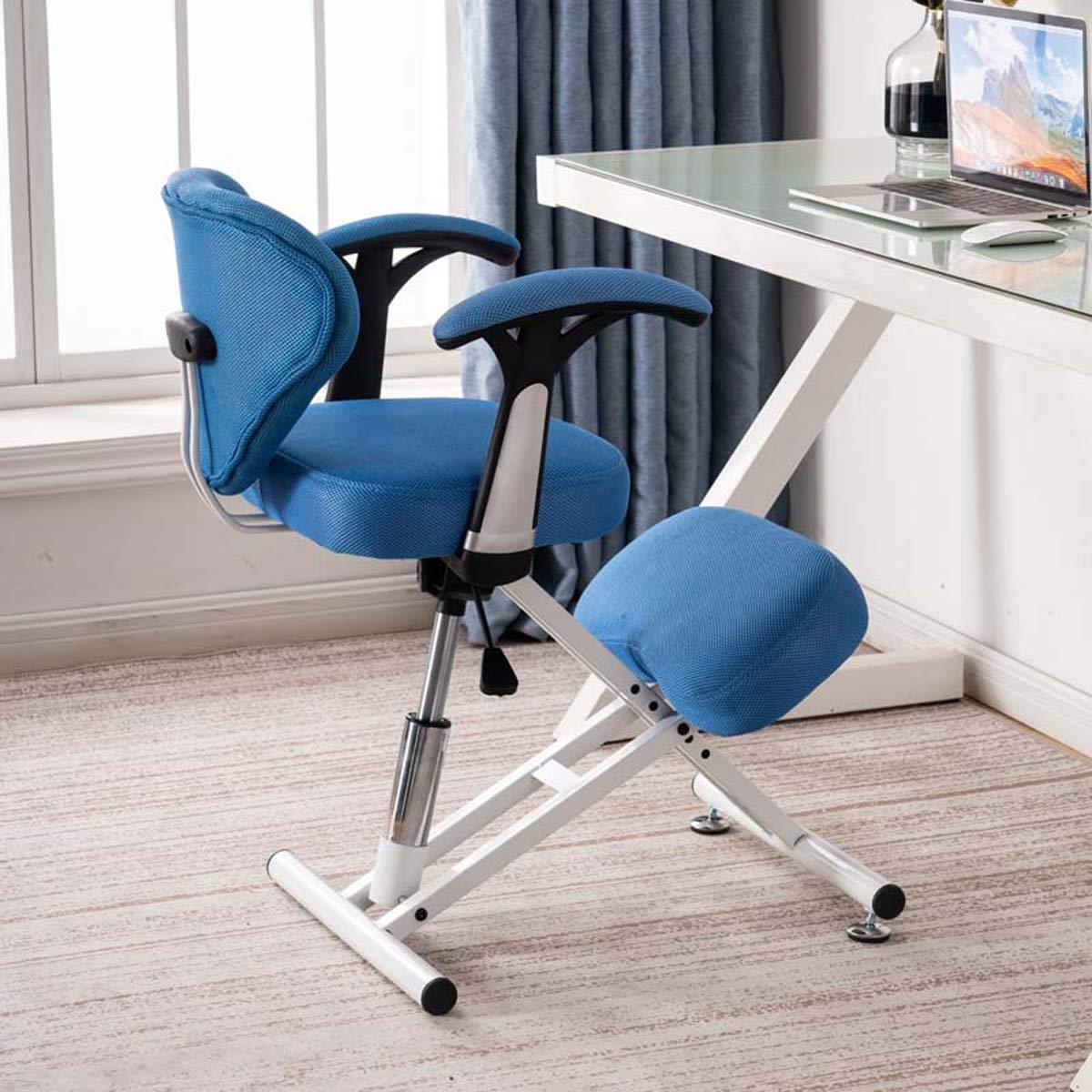 AYUSHOP Bekväm knästol ergonomisk knästol med ryggstöd, ergonomisk stol designad för att lindra ryggsmärta och förbättra hållningen stark och hållbar, grå BLÅ