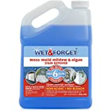 Wet-and-Forget 10587 1 Gallon Moss, Mold and Mildew Stain Remover