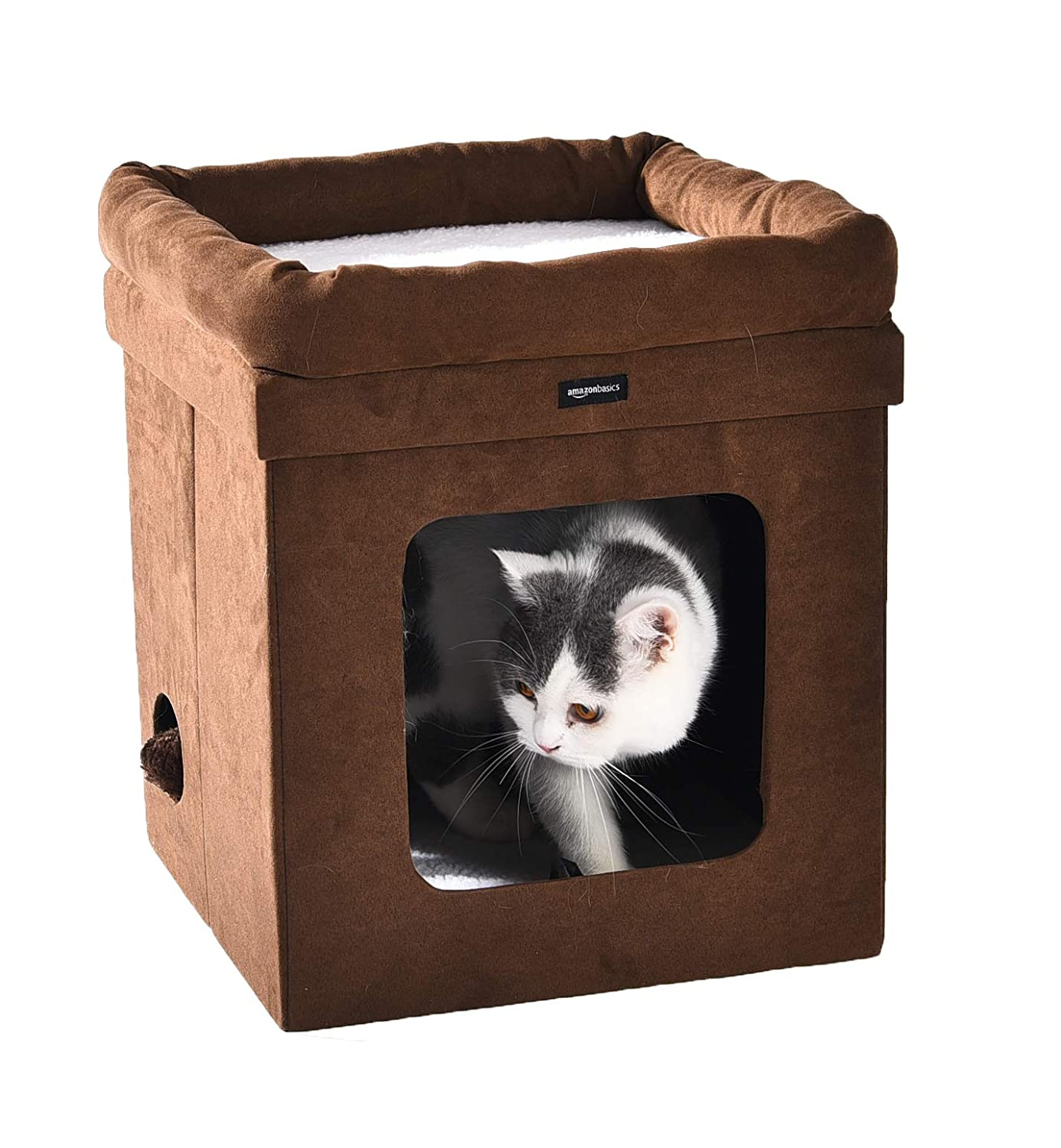 Collapsible Cat House ONLY $13...
