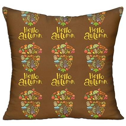 Amazon ZMLSJY Soft Square Throw Pillow Hello Autumn Decorative Inspiration Autumn Decorative Pillows