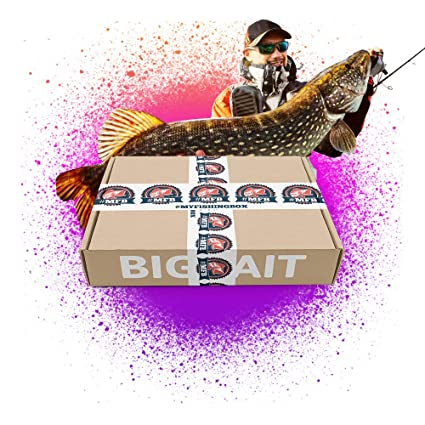 myfishing Box bigbait – (30g hasta 60 g) – El Cebo artificial Juego en