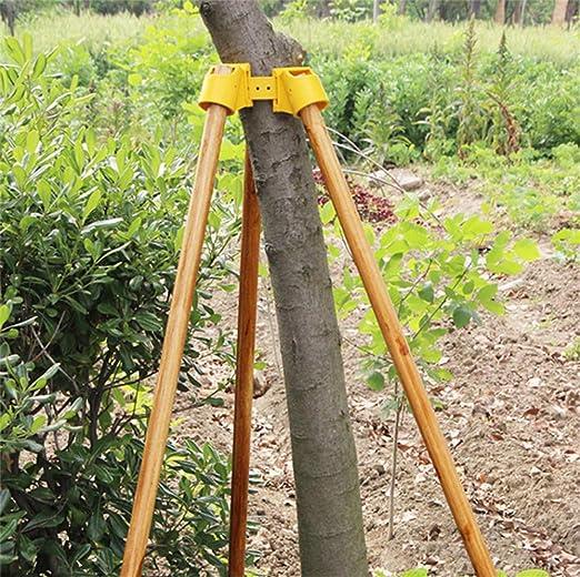 Gardening TPR - Kit de soporte para árbol de frutas, protección ...