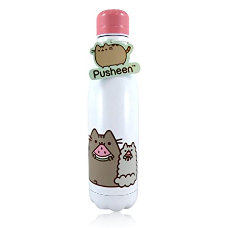 Amazoncom Pusheen And Stormy Stainless Steel Water Bottle Sports