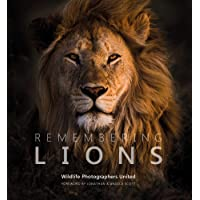 Image for Remembering Lions