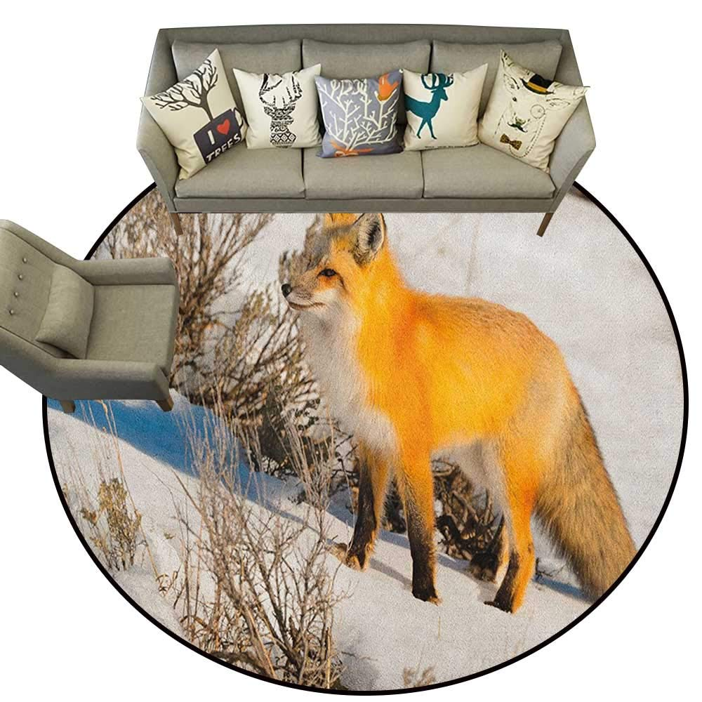 Style04 Diameter 54(inch& xFF09; Fox,Personalized Floor mats Red Fox in Nature Snowy Mountain Cold Winter Scenery Wildlife Carnivore Image D54 Floor Mat Entrance Doormat