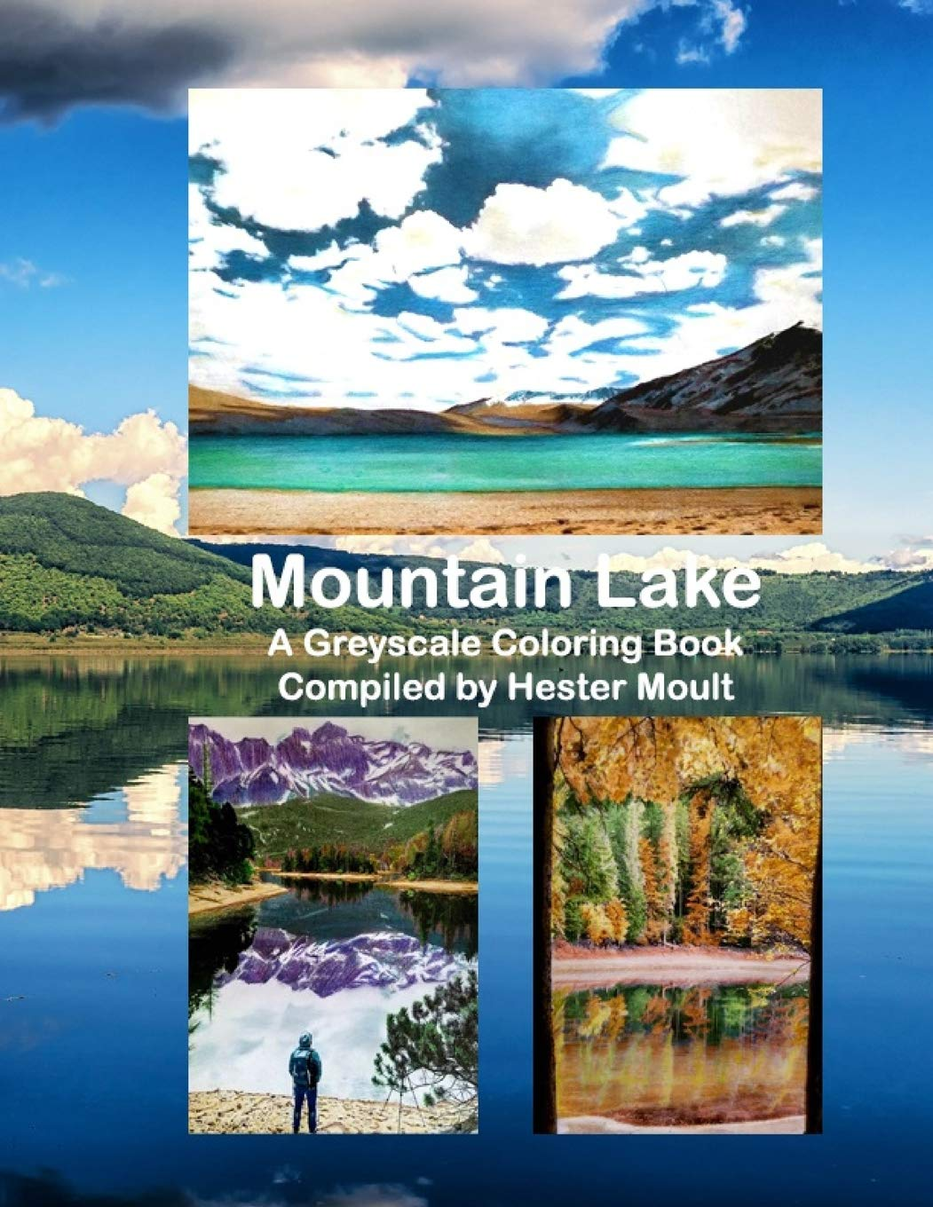 Mountain Lake A Greyscale Coloring Book Moult Hester 9781795164122 Amazon Com Books