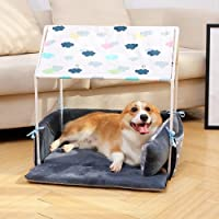 La Vie - Cama para mascotas con luz y almohada, cómoda y bonita tienda de