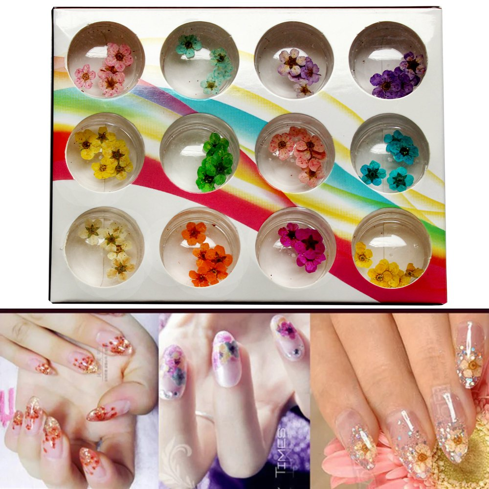 12 Colors Nail Dried Flowers 3D Nail Art Sticker, Natural Real Dry Flower, Nail Design Art Decorations...