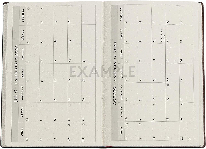 Paperblanks 2020-2021 Colibri Agenda 18 mois horizontal Format mini 95 x 140 mm