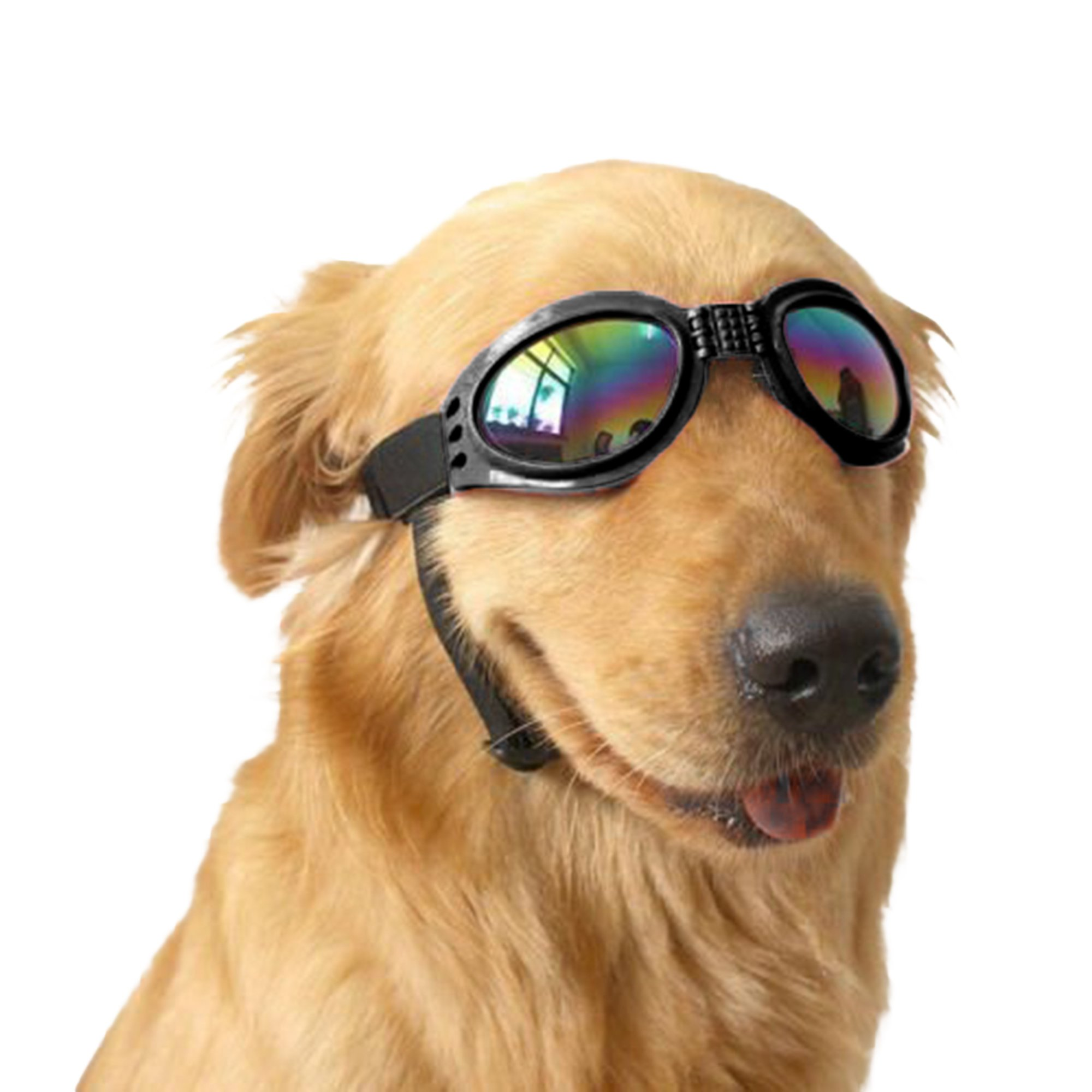 Beautyflier Kloud City Pet Eye Wear Protection Goggles Foldable Adjustable Strap Sunglasses for Dog Outside (Black)