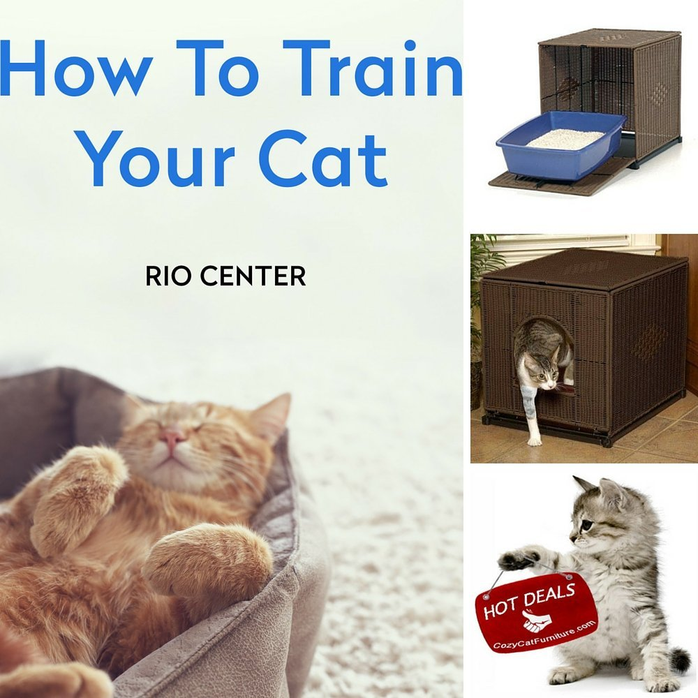 Cat Litter Box Furniture & EBOOK HOW TO TRAIN YOUR CAT BY RIO CENTER,Hidden Litter Box,Kitty Litter Box,Best Decorative Cat Litter Box-Is a Stylish Litter Box Cover Choice For All Feline Lovers.