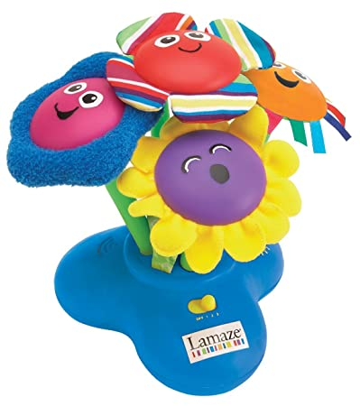 Amazoncom Lamaze Chime Garden Discontinued by Manufacturer