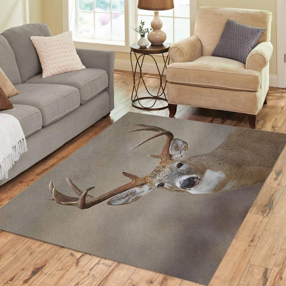 Semtomn Area Rug 3' X 5' Trophy Whitetail Buck Deer Midwestern Hunting Illinois Ohio Wisconsin Home Decor Collection Floor Rugs Carpet for Living Room Bedroom Dining Room