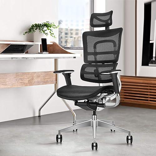 Editors' Choice: GICLAIN Ergonomic Mesh Office Manager Chair Liftable Backrest Height Adj Backrest Tilt Angle Adjustment All-Aluminum Alloy Skeleton Headrest Adj  Seat Depth Adj