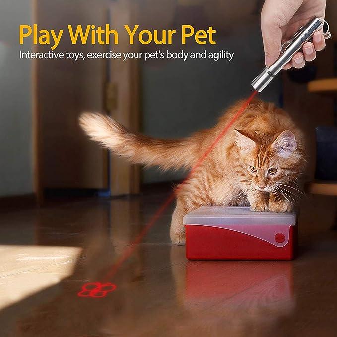 Juguetes para gatos Puntero LED, USB recargable 3 en 1 Función, Mini linterna + Luz roja + Luz ultravioleta, Interactivo Mascota Comando de luz, Herramienta de entrenamiento para Gato Perro Cazador: Amazon.es: