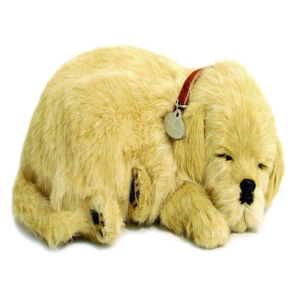 Amazon Com Golden Retriever Puppy Plush Collar With Pet Tag Stuffed