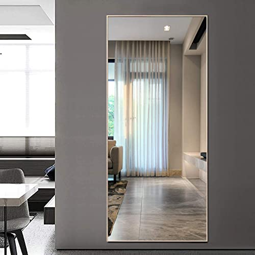 Hans Alice 65″x24″ Full Length Floor Mirror