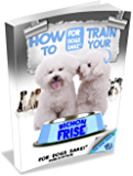 Training your Bichon Frise (The Complete Guide to Bichon Frise)
