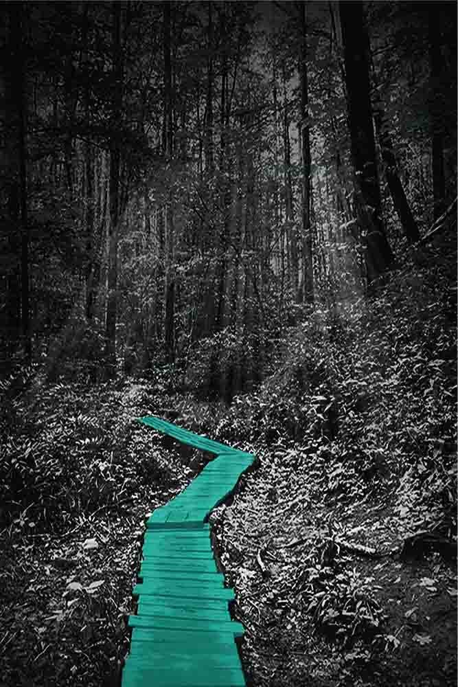 Path in Forest - Gray Background - 8 Decor Colors, 20'' x 30'' Canvas Wrapped, Home Decor Wall, Forest, Woods, Pictures, Living Room, Bedroom, Family Room, Kids Room) (Teal)