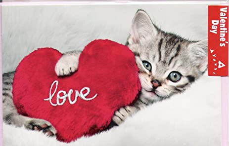 kitten holds heart cat valentines day card - Cat Valentines Day