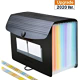 Accordian File Organizer/Expanding File Folder,Rainbow Portable/Desktop A4 Letter Size Filing Box,13-Pocket Plastic Accordion Bill Paper Document Organizer Wallet Briefcase,2 Colored A to Z/A-Z Tabs