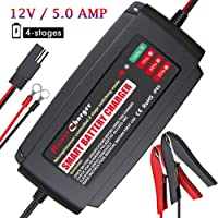 Amazon Best Sellers: Best Boat Battery Chargers on