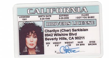 Cher Novelty Drivers License / Fake Id Identification for Silkwood and  Mermaids fans