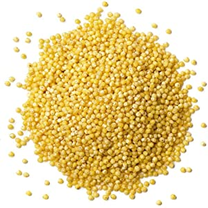 Organic Hulled Millet, 20 Pounds — Whole Grain Seeds, Non-GMO, Kosher, Raw, Bulk, Product of the USA