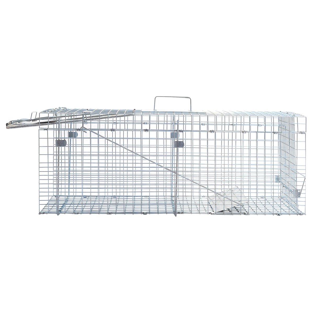 Amazon.com: Live Animal jaula trampa de mouse rata hámster ...
