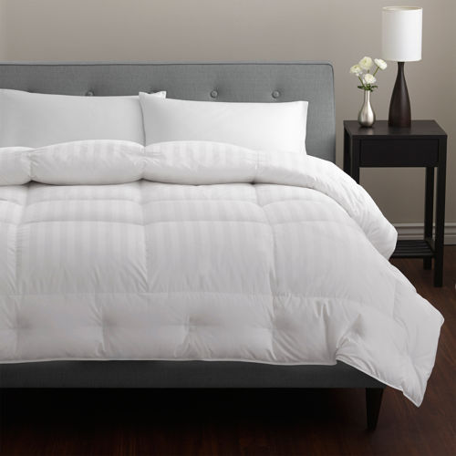 Pacific Coast® Platinum European 500TC Comforter with Pyrénées Down - Light Warmth