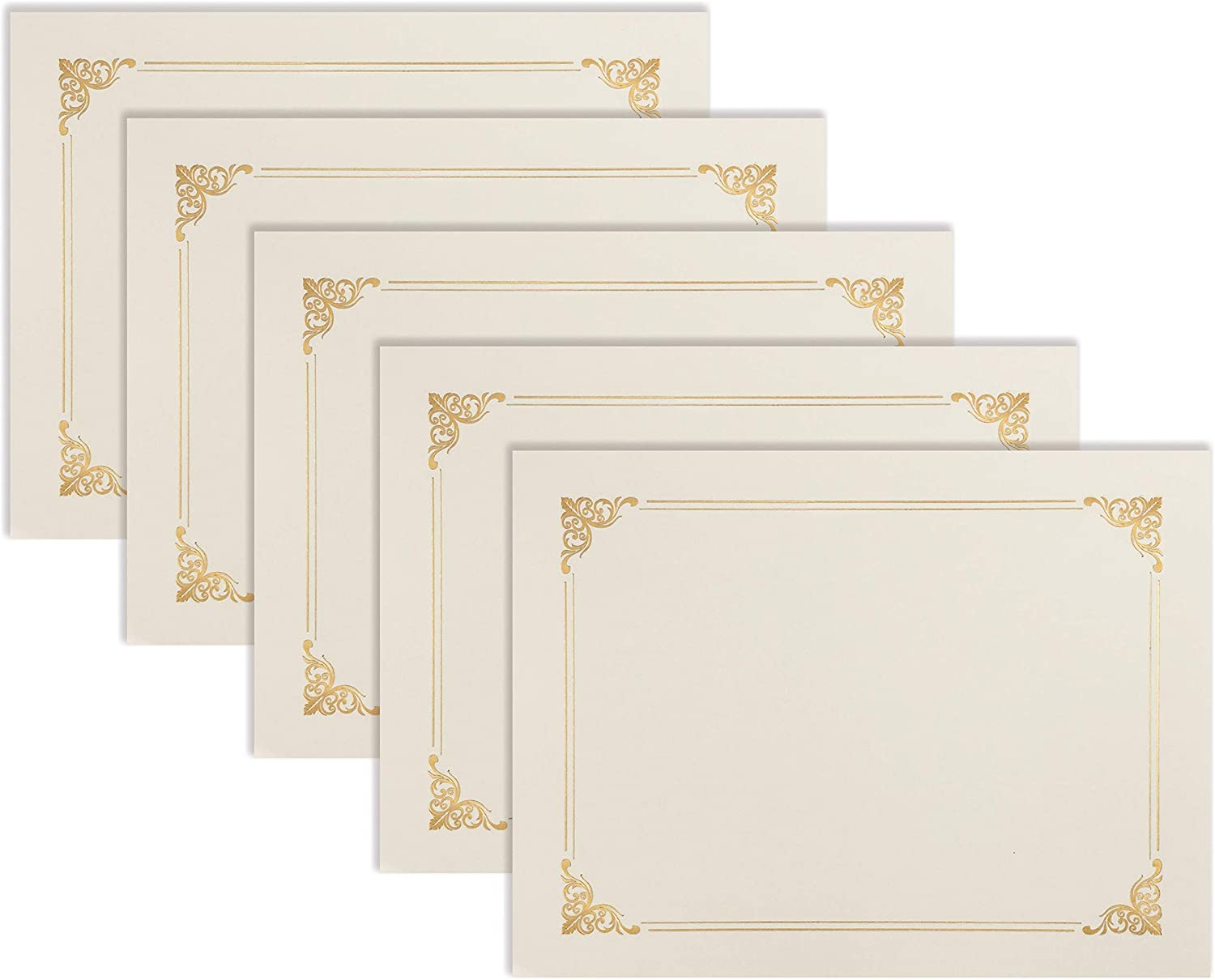 25 Pack Ivory Certificate Holders, Diploma Holders, Document Covers with Gold Foil Border, by Better Office Products, for Letter Size Paper, 25 Count, Ivory White
