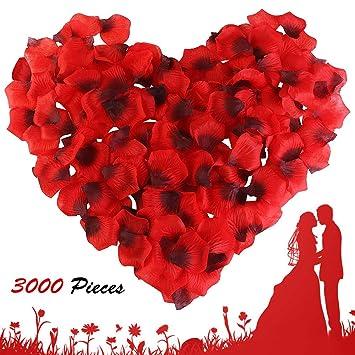 isimsus Pétalos de Rosa, 3000 Piezas Seda Rojo Rosa Pétalos Hermosos Rojo Flores de Rose