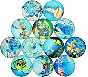 URYY 20 PCS Glass Dome Cabochons,Sea Turtle Whale Jellyfish Small Fish Half Round Flat Backed Printed Glass Cabochons