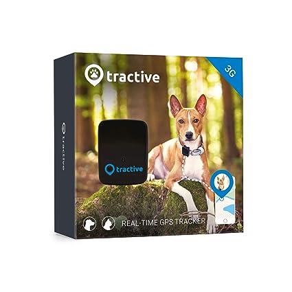 Amazon.com: GPS, rastreador de mascotas para perros y gatos ...