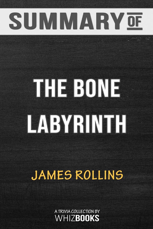 Summary of the Bone Labyrinth: A SIGMA Force Novel (SIGMA Force Novels):  Trivia/Quiz for Fans: Whizbooks: 9780464975458: Amazon.com: Books