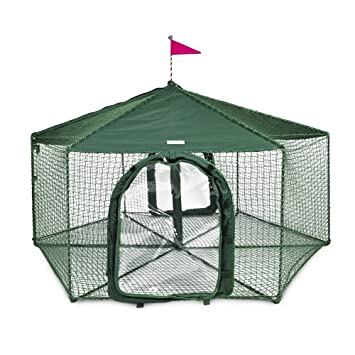 Gazebo Outdoor Cat Enclosure Green  sc 1 st  Amazon.com & Amazon.com : Gazebo Outdoor Cat Enclosure Green : Cat Houses And ...