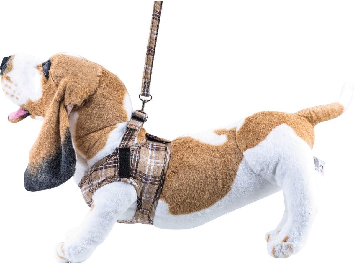 Gr/ö/ße:M Komfortables Hundegeschirr Scottish Beige XXS-M