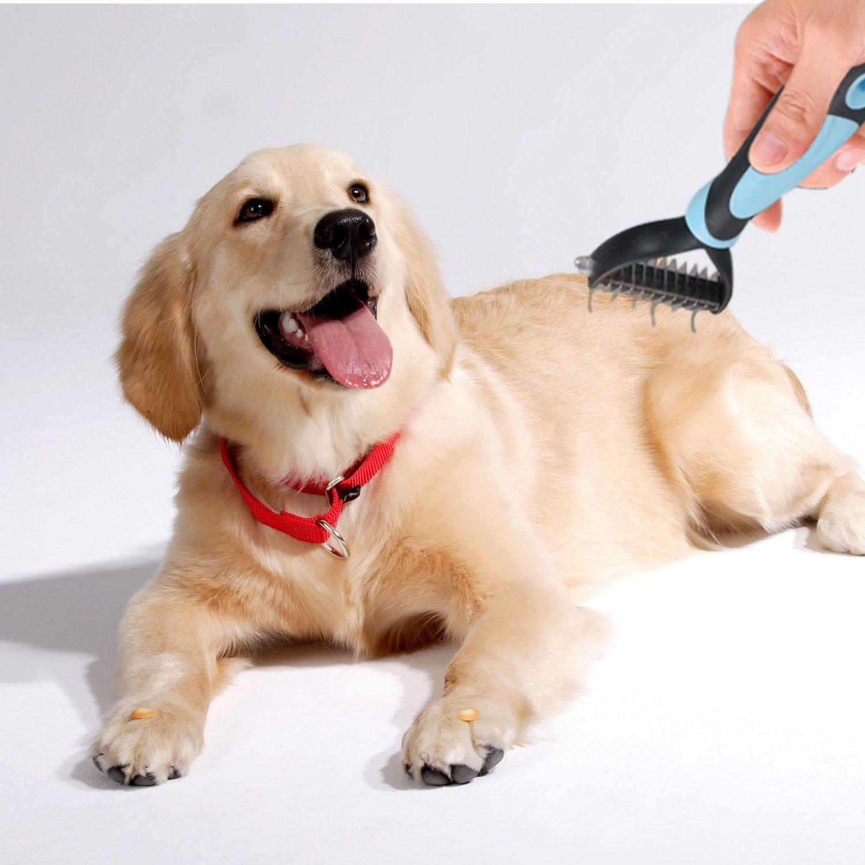 Happy & Polly Cepillo para Mascotas, Cepillo para Gato y Perro para Quitar Pelo Suelto, Nudos y Enredos (Largo-Azul): Amazon.es: Productos para mascotas