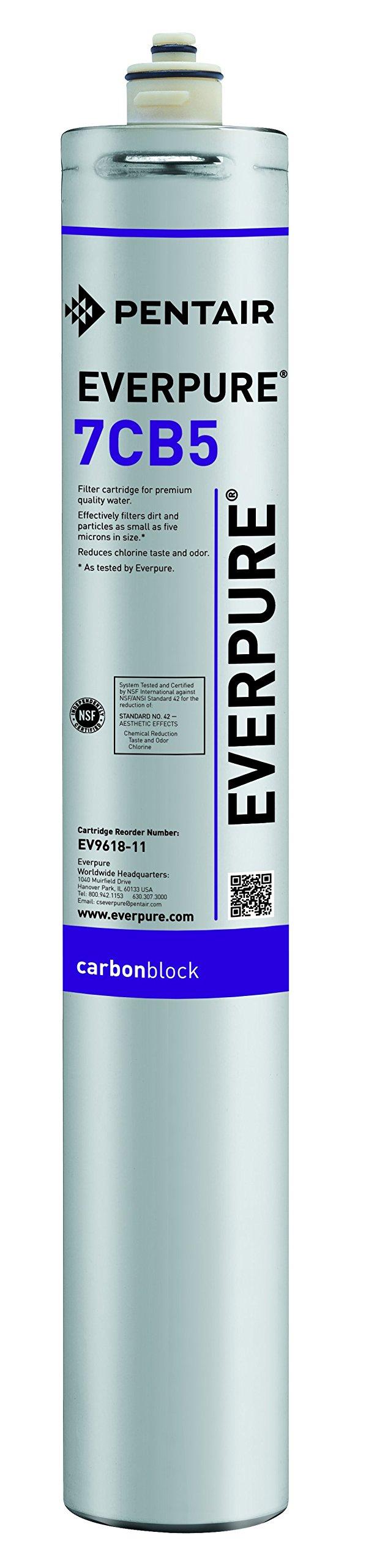 Everpure EV9618-11 7CB5 Filter Cartridge