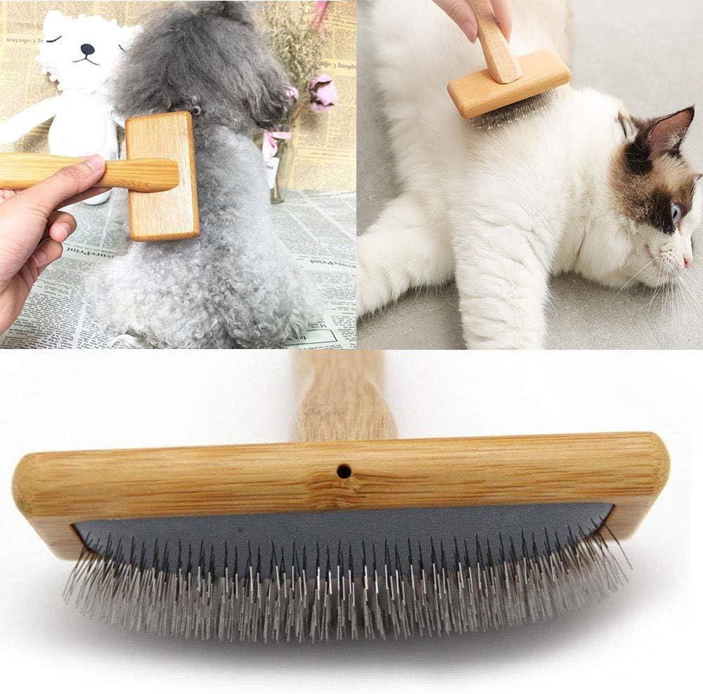 cepillo perro
