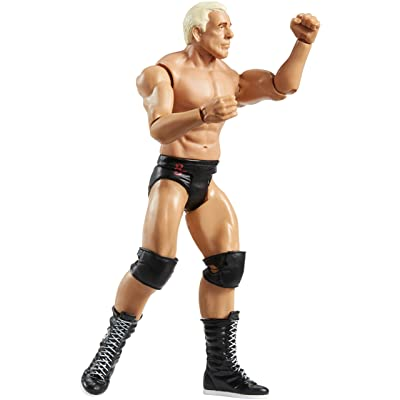 WWE Summerslam Ric Flair Core Figure: Toys & Games