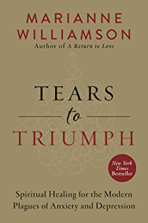Amazon wtf whats the future and why its up to us ebook tim tears to triumph the spiritual journey from suffering to enlightenment fandeluxe Images