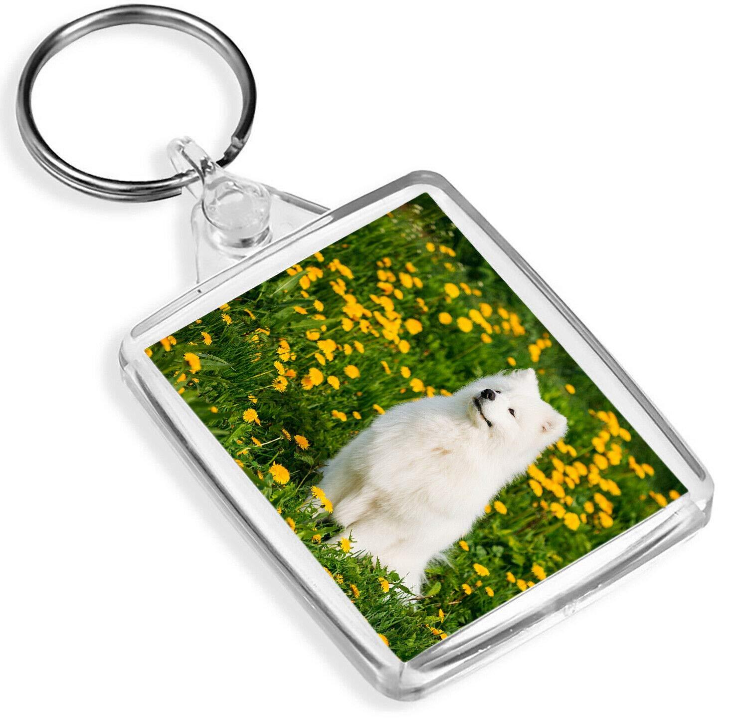 Blanc Samoy/ède Chien Chiot Keyring Fluffy Cute Pet Fun Cadeau # 12361 Keyring