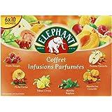 Elephant Infusion Coffret 60 Sachets 106 g - Lot de 3