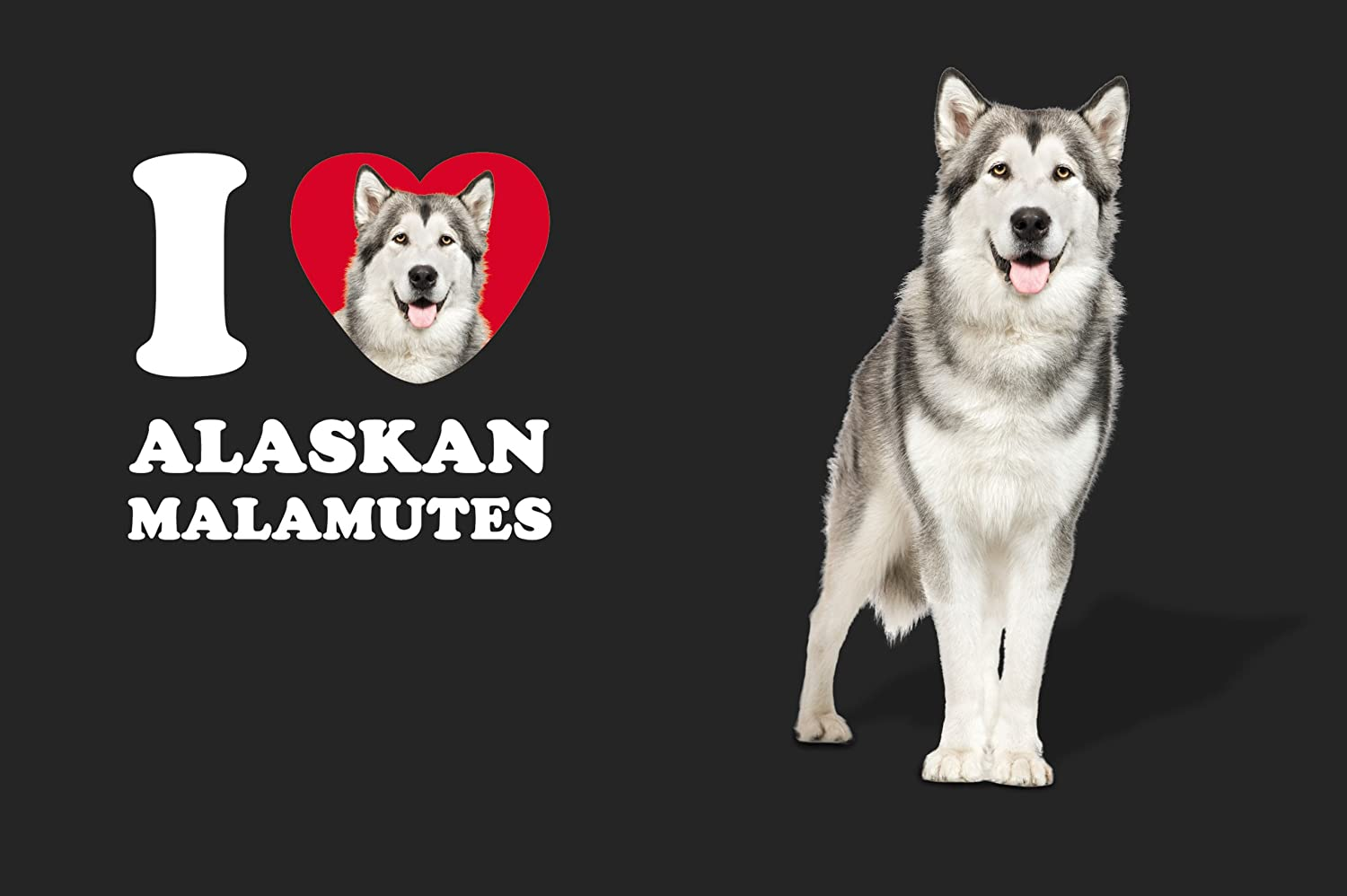 Tree-Free Greetings SG24991 I Heart Alaskan Malamutes Sip N Go Stainless Lined Travel Tumbler 16-Ounce Tree Free